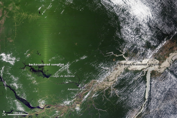 satellite image of Amazon rainforest