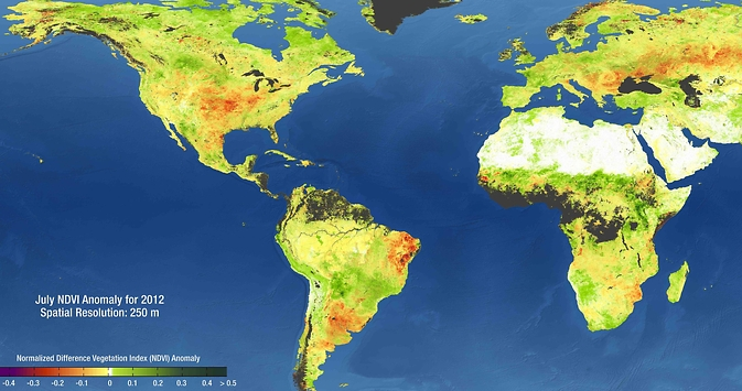 NASA satellite data incorporated into OpenNEX include global views of drought conditions. Green regions in this map of July 2012 are areas with more vegetation than an average July (2000-2013); red regions have less vegetation than average. Regions in black have no data due to clouds and snow.