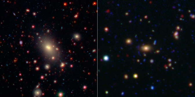 Monster in the Middle: Brightest Cluster Galaxy