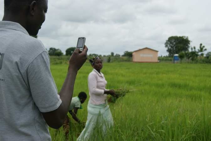 a man looks at his smartphone while others work a green field