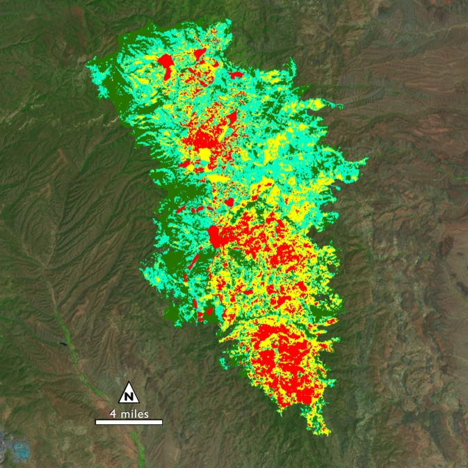 Soil burn severity map of the New Mexico Silver Fire