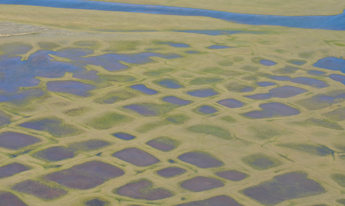 This photo taken during the CARVE experiment shows polygonal lakes created by melting permafrost on Alaska's North Slope