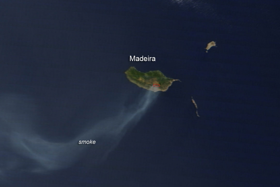 Wildfire on the island of Madeira