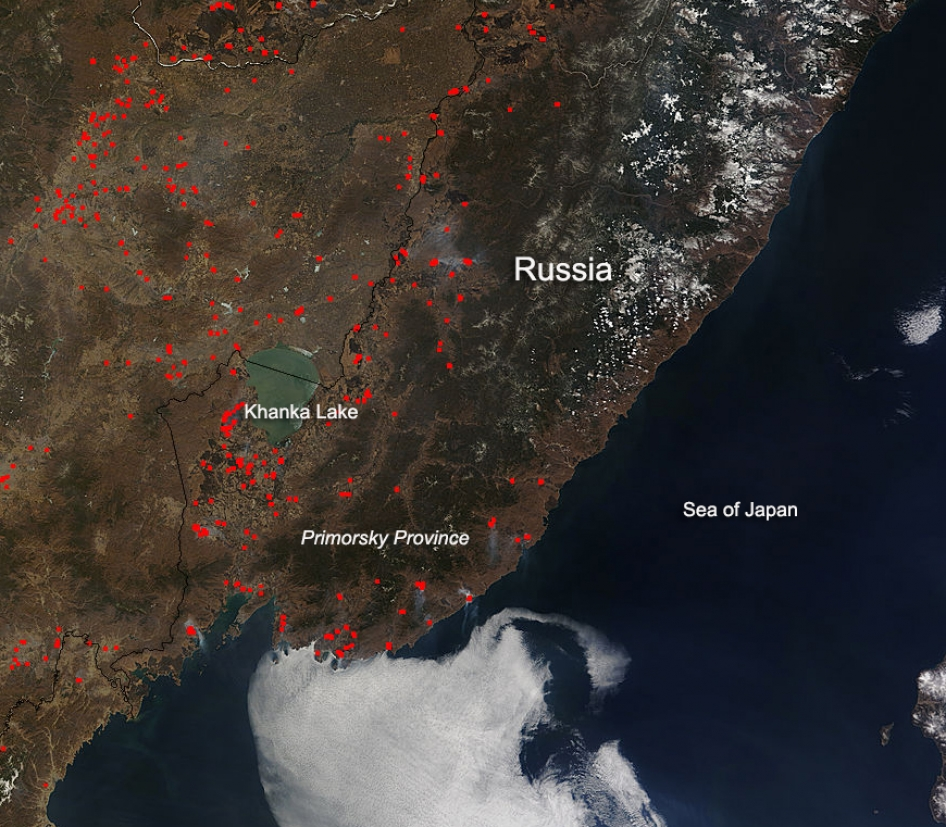 Fires in the Primorsky Province of Russia