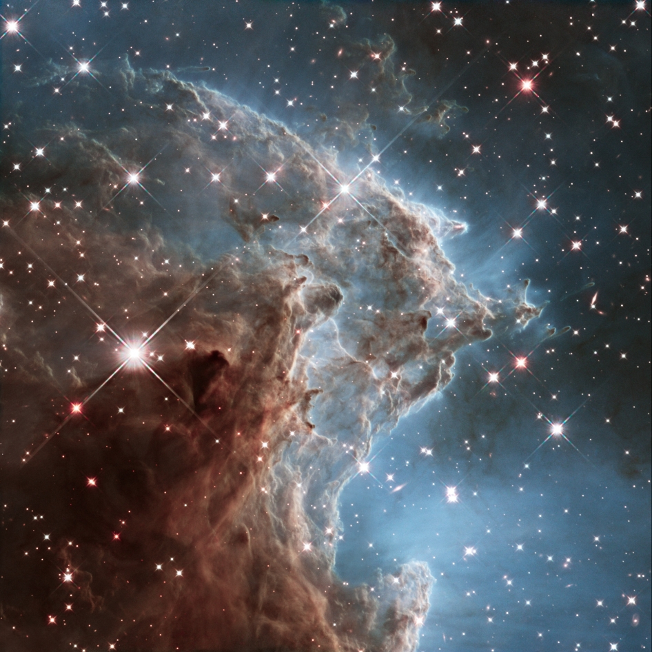 This colorful Hubble Space Telescope mosaic of a small portion of the Monkey Head Nebula unveils a collection of carved knots of gas and dust silhouetted against glowing gas. The cloud is sculpted by ultraviolet light eating into the cool hydrogen gas.