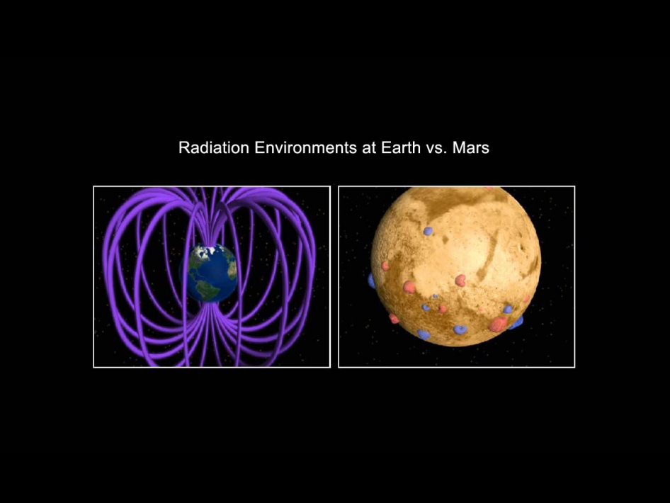 Earth and Martian Magnetic Fields
