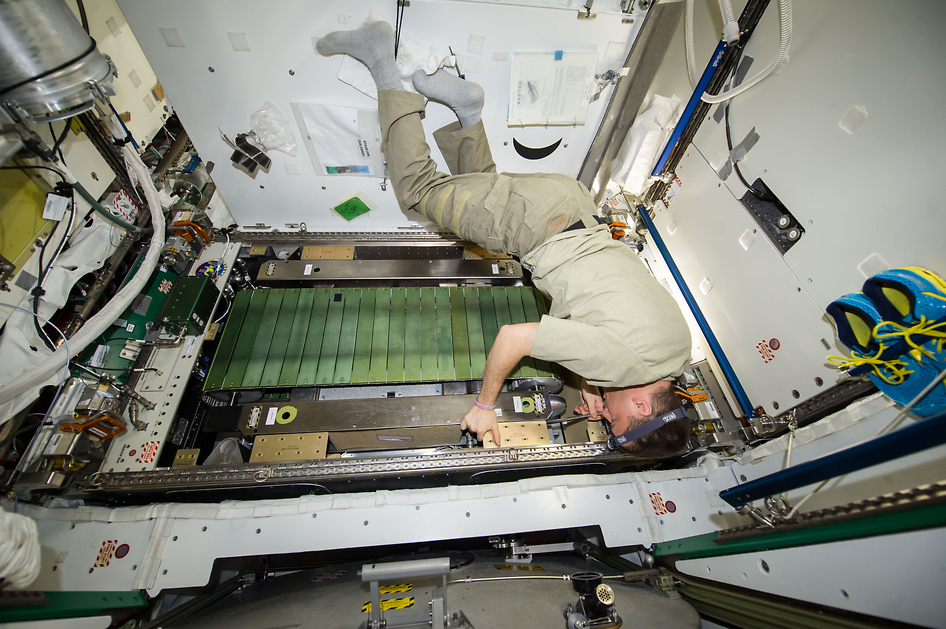 NASA Astronaut Reid Wiseman Works on COLBERT Treadmill   NASA