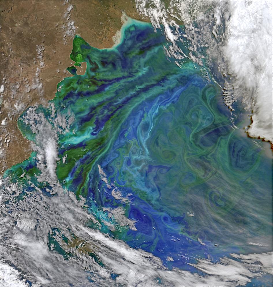 nasa ocean color - photo #23