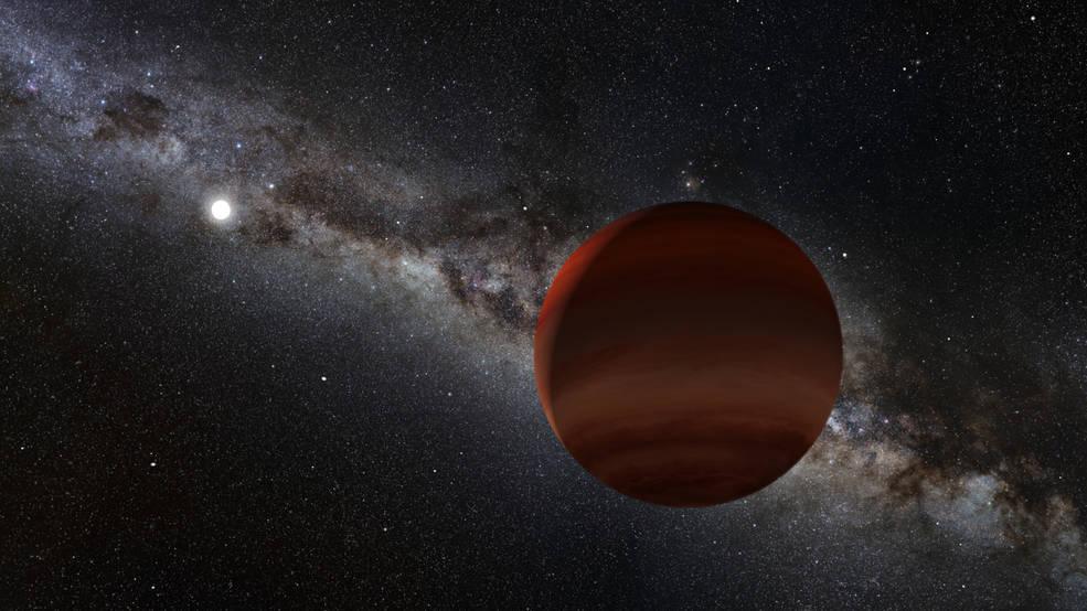 the white dwarf and a brown dwarf companion