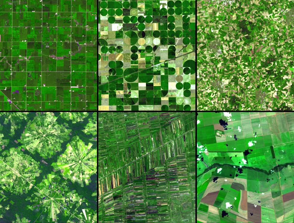 Alt: Panel of six satellite images of crops fields from around the world that show the different field layouts.
