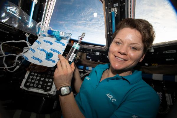 Αστροναύτης της NASA Anne McClain μέσα στην περιοχή των τραπεζοειδών παραθύρων, με γη ορατή στο παρασκήνιο