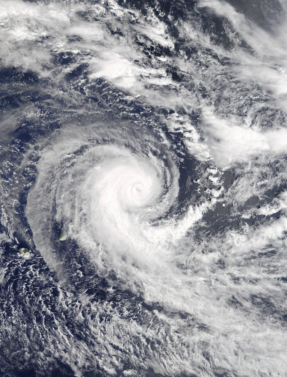 Terra image of Berguitta