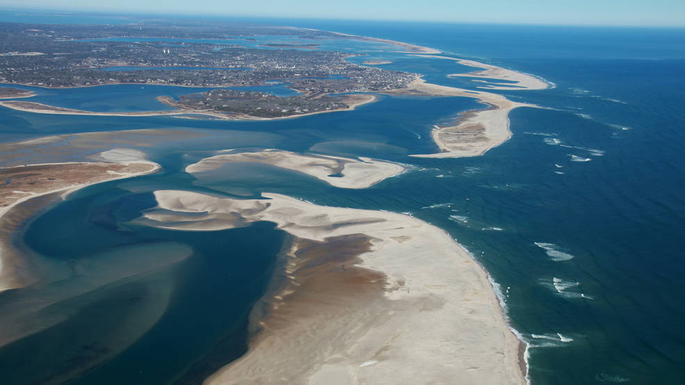 Cape Cod National Seashore is a protected marine area, home to a variety of ecosystems with diverse plants and animals.