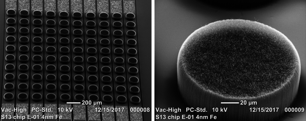 electron microscope view of patterned nanotubes