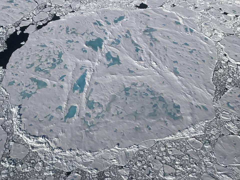 A large sea ice floe.