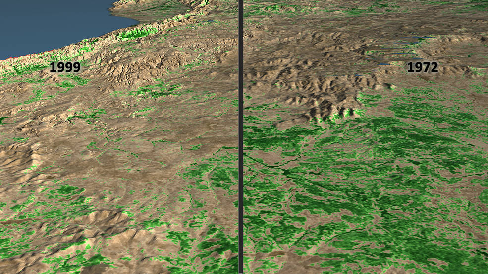 side-by-side image showing deforestation