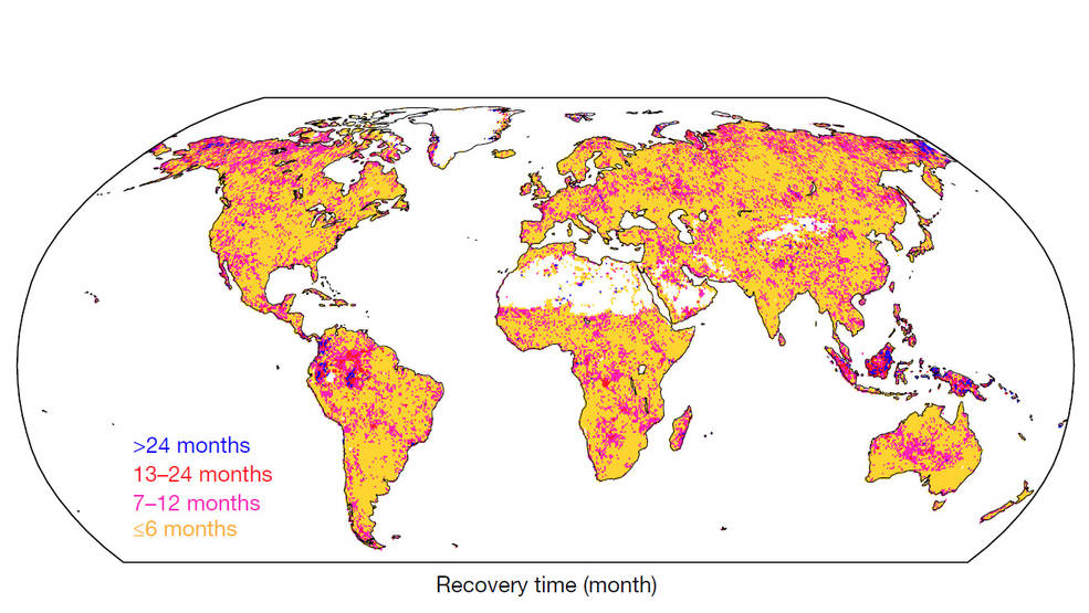 Global patterns of drought recovery time