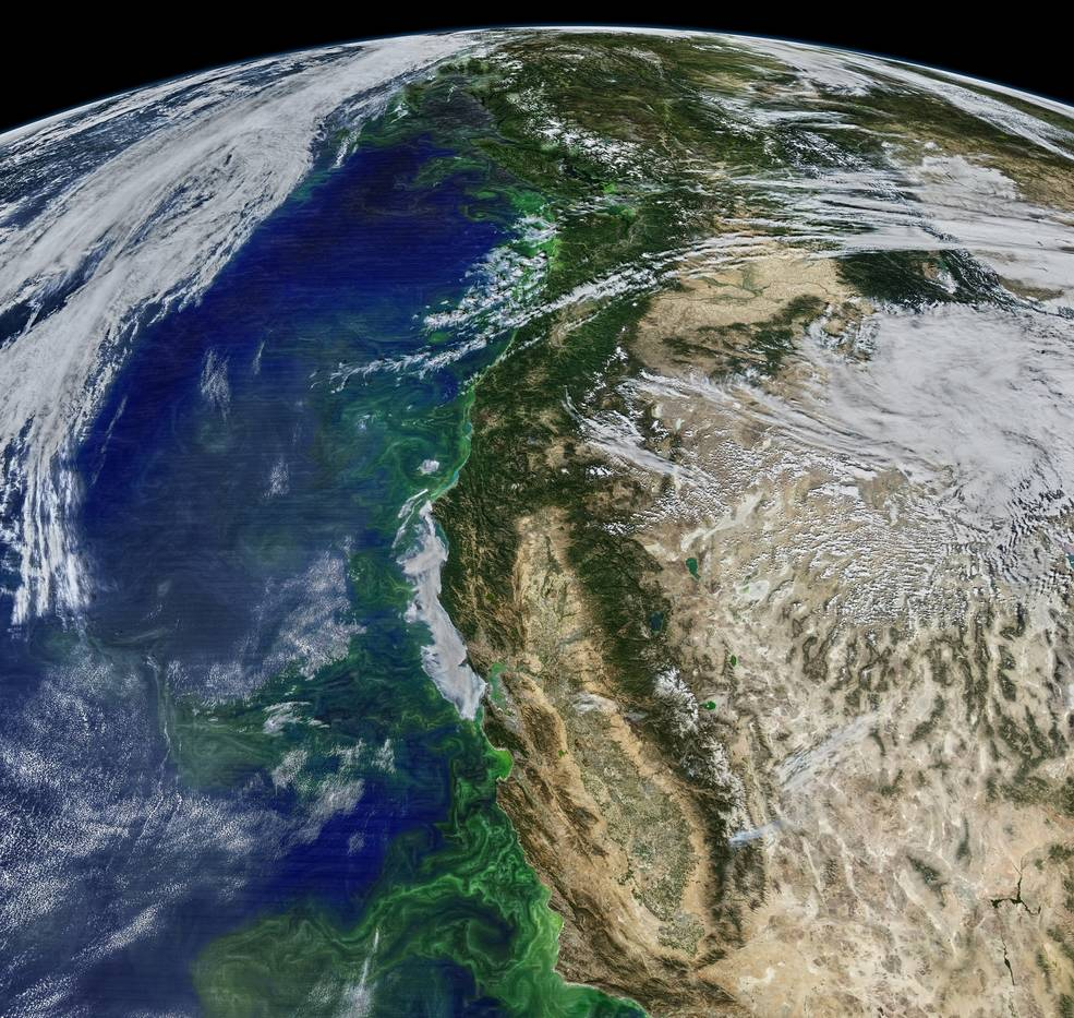 Image from MODIS instrument on NASA Aqua satellite showing phytoplankton along the U.S. West Coast