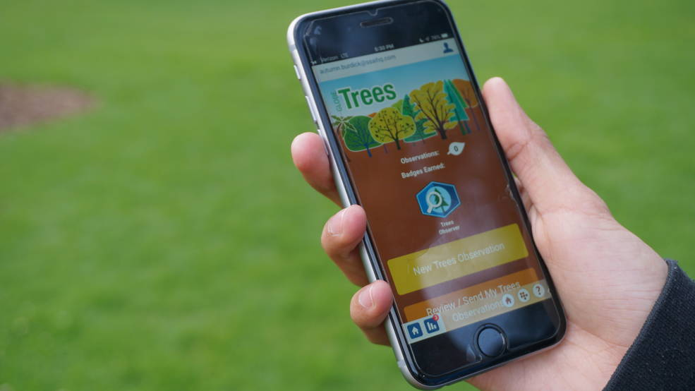 The GLOBE Trees tool is easy to use – by tilting their smartphone up and down, then pacing off the distance to a tree, citizen s