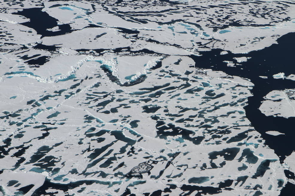 aerial view of sea ice with black gaps