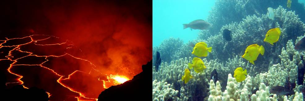 In February 2017, scientists begin collecting data on coral reef health and volcanic emissions and eruptions in Hawaii.