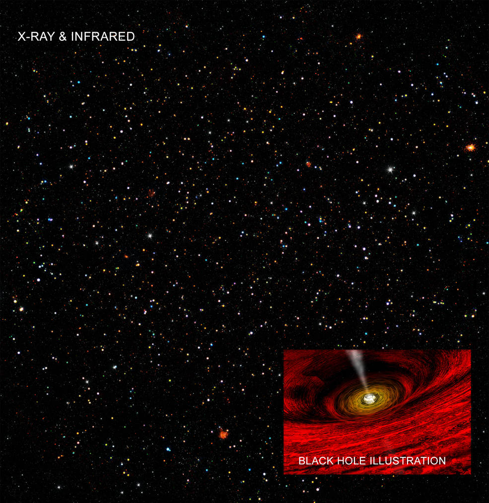 Finding the Happy Medium of Black Holes  Imbhs
