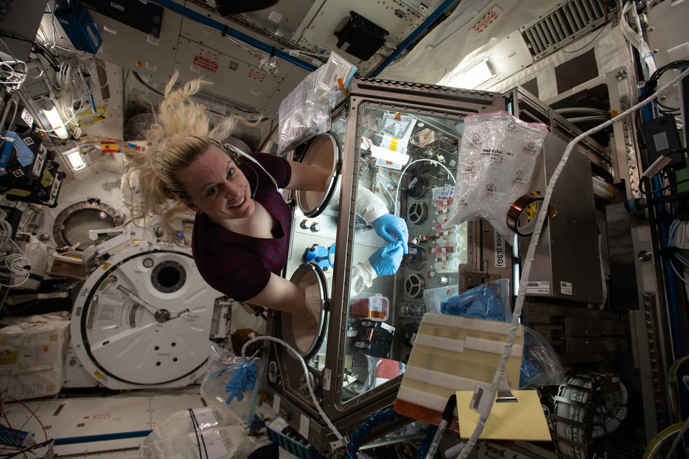 NASA astronaut and Expedition 64 Flight Engineer Kate Rubins works inside the Life Sciences Glovebox conducting research