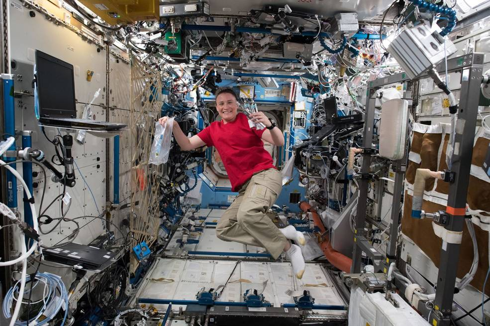 Expedition 56 Flight Engineer Serena Auñón-Chancellor of NASA is pictured in the Destiny laboratory module