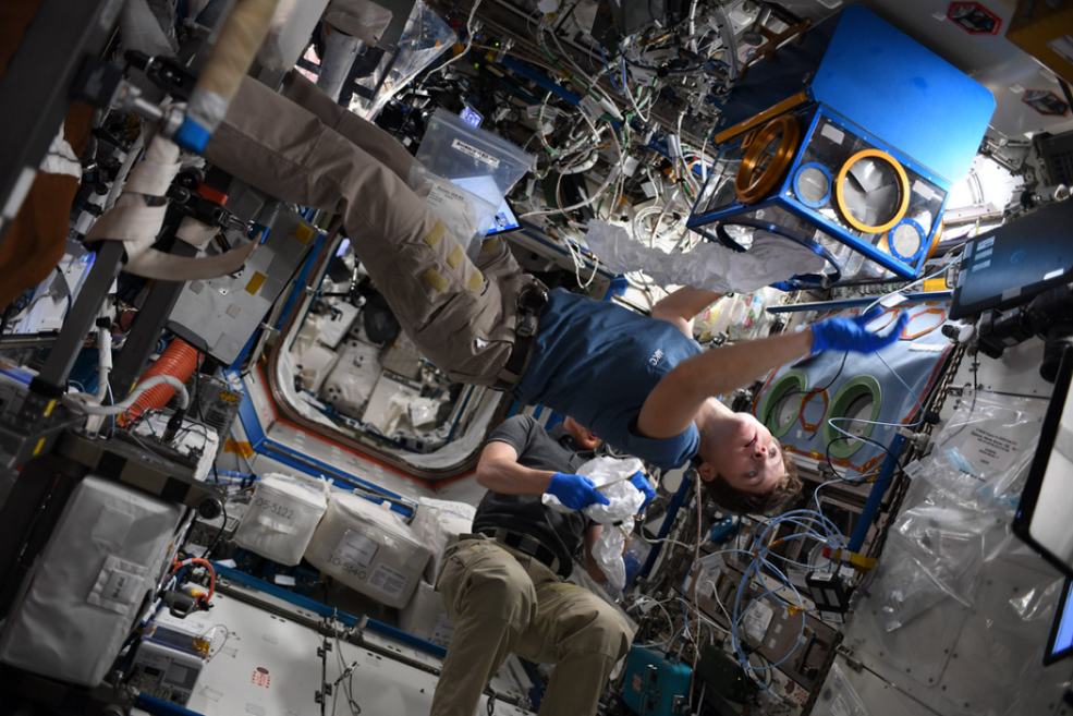 Expedition 58 Flight Engineer Anne McClain conducts a science experiment aboard the International Space Station.