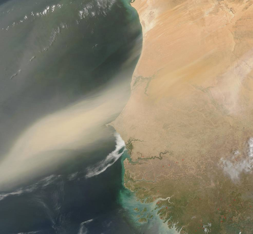 2003 satellite image shows a large dust plume blowing off the Sahara Desert and out over the Atlantic Ocean