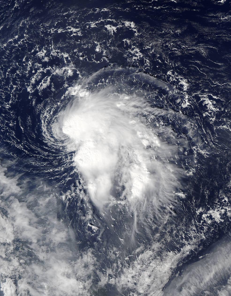 Aqua image of Nicole
