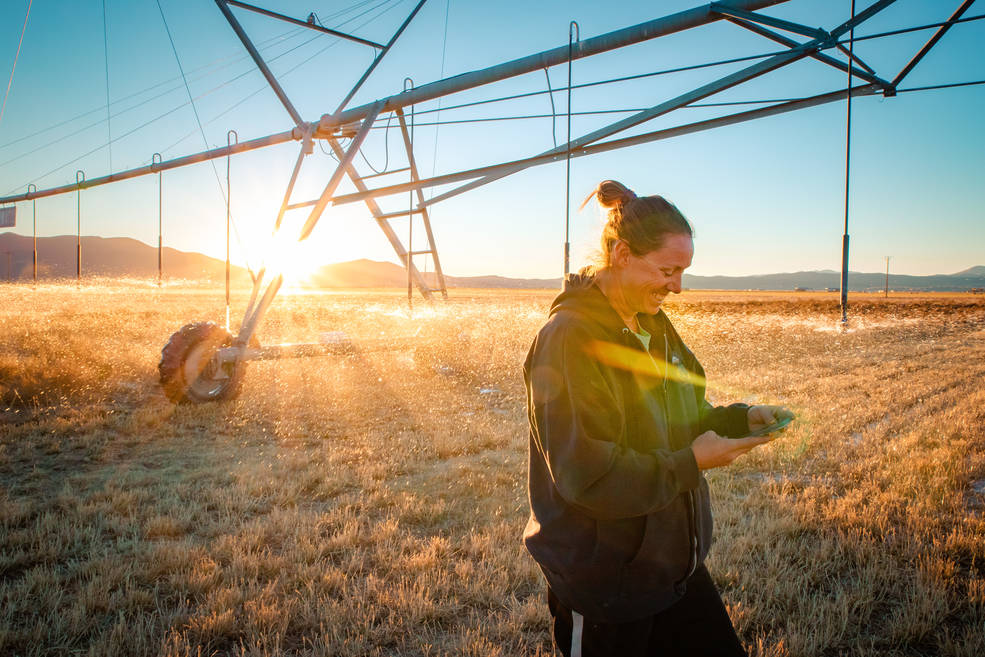 Nevada farmer Denise Moyle in a field checking her mobile phone.