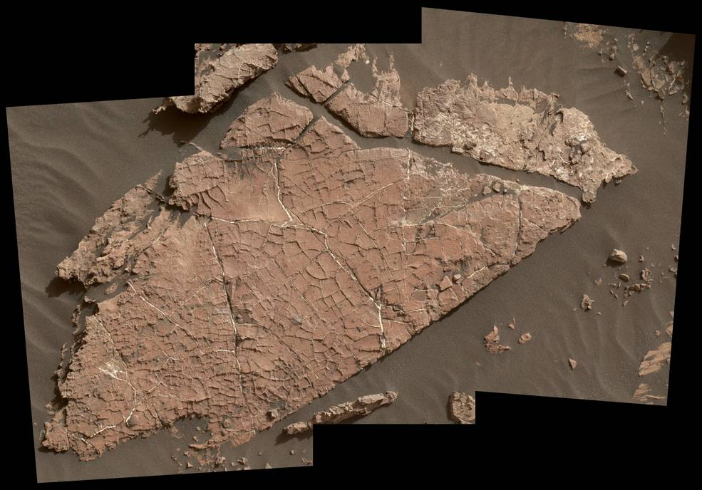 Possible Mud Cracks Preserved in Martian Rock