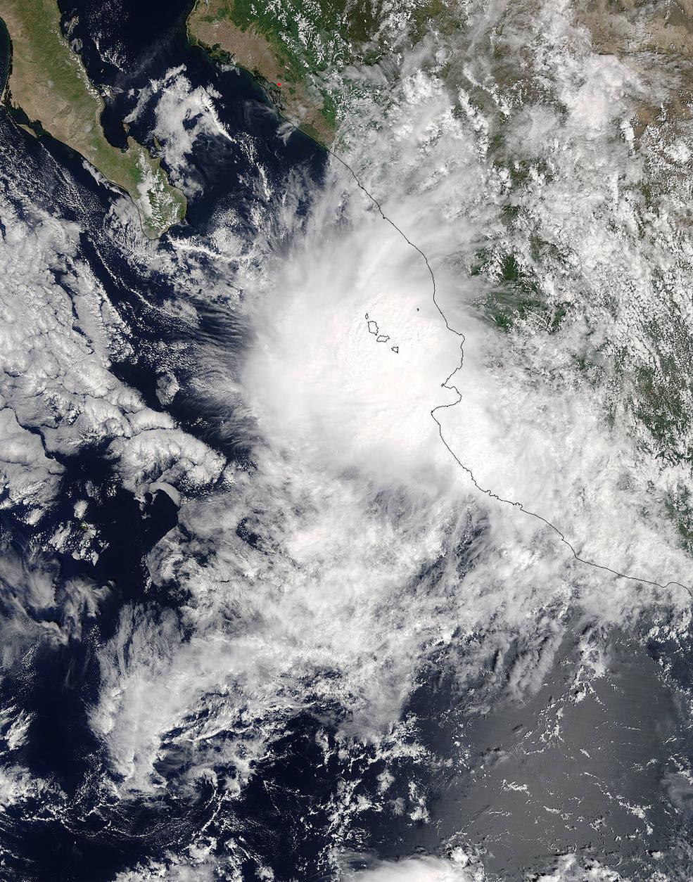 Terra image of Pilar