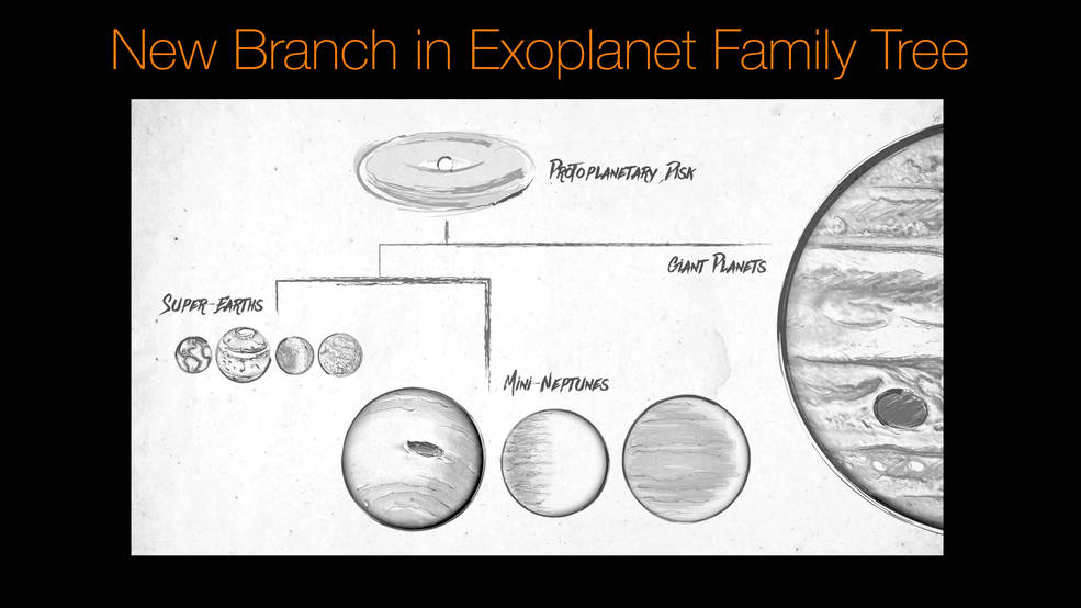 New Branch in the Exoplanet Family Tree
