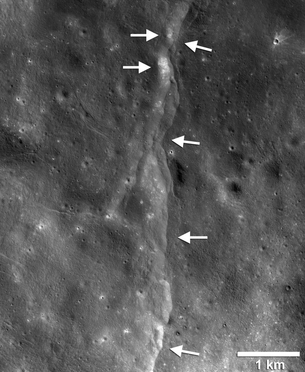 This prominent lunar lobate thrust fault scarp is one of thousands discovered in Lunar Reconnaissance Orbiter Camera (LROC) images. The fault scarp or cliff is like a stair-step in the lunar landscape (left-pointing white arrows) formed when the near-surface crust is pushed together, breaks, and is thrust upward along a fault as the Moon contracts. Boulder fields, patches of relatively high bright soil or regolith, are found on the scarp face and back scarp terrain (high side of the scarp, right-pointing arrows). Image LROC NAC frame M190844037LR.