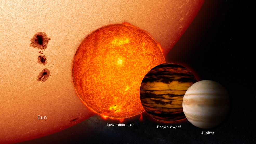 illustration comparing sizes of stars to a brown dwarf and Jupiter