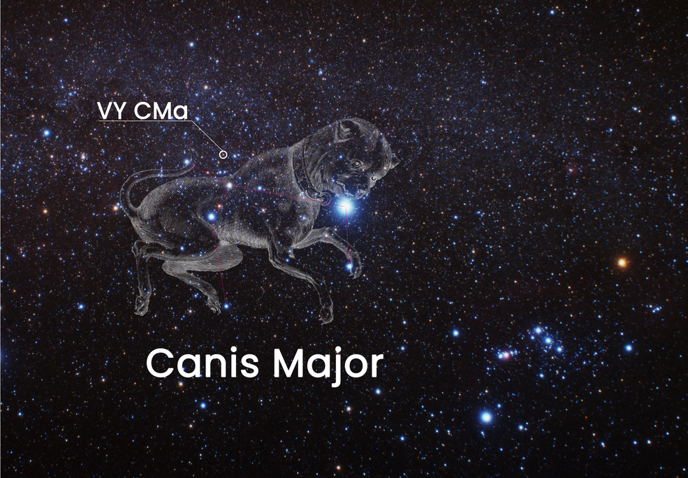 This image shows the location of the red hypergiant VY Canis Majoris on the sky. The monster star is located just above the back