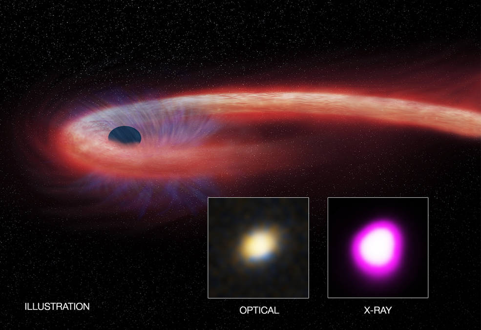 """Artist's illustration depicts what astronomers call a """"tidal disruption event,"""" or TDE."""