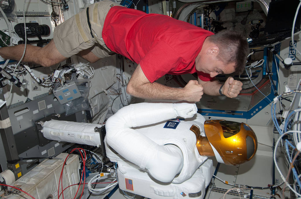 Life In Space, International Space Station, Free Lesson.