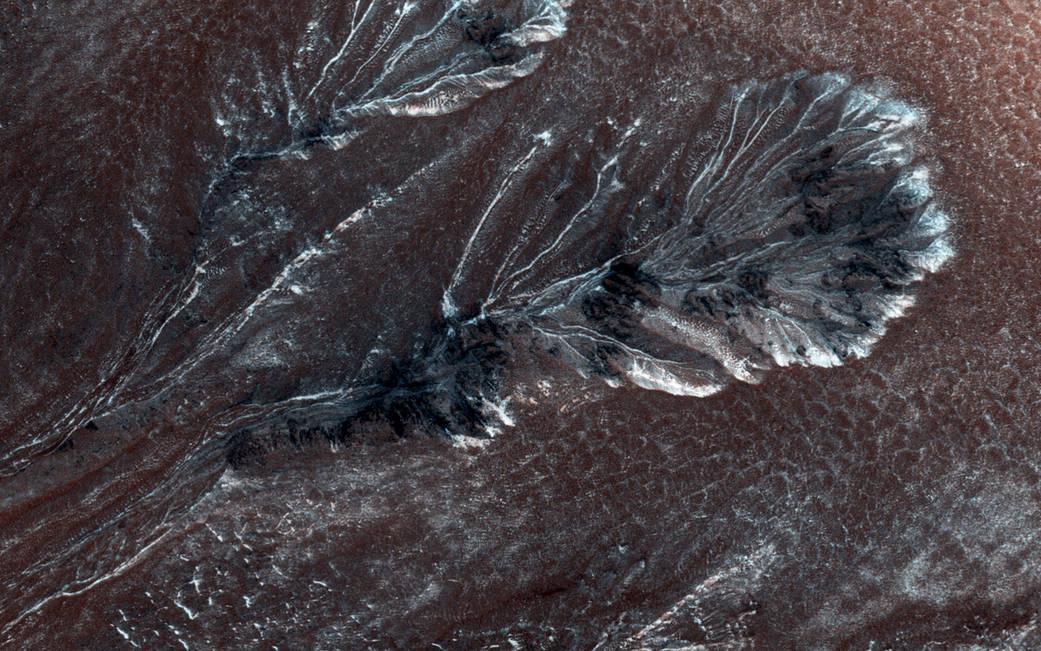 Flows in gullies on dark red Mars surface