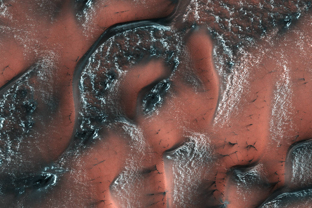 Dunes on surface of Mars with snow and ice on ridges