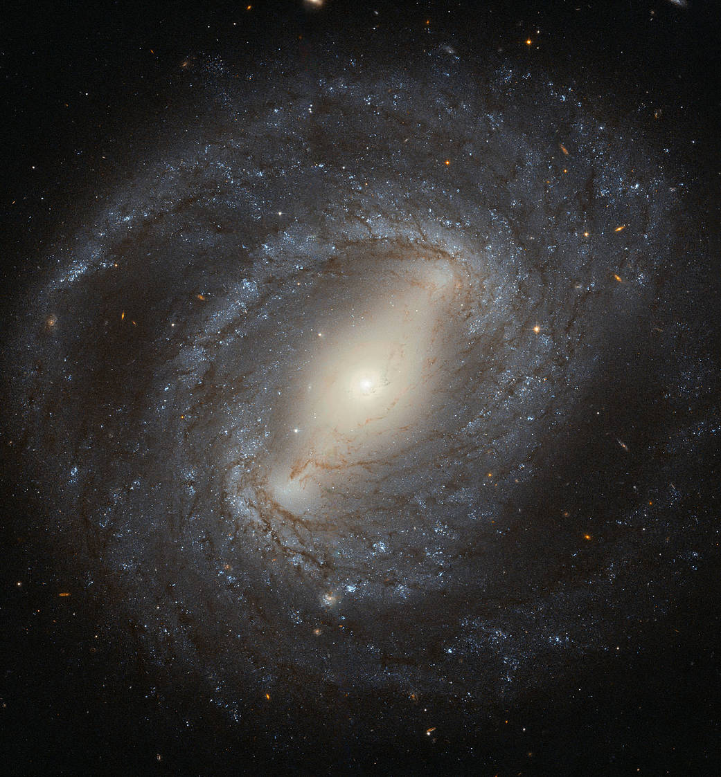 NGC 4394 é o arquétipo da galáxia espiral barrada com braços espirais emergem das extremidades de uma barra que corta através da galáxia