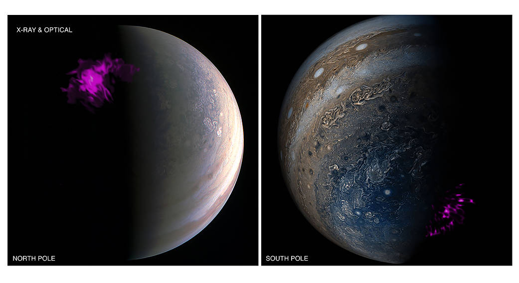 Jupiter's intense northern and southern lights, or auroras, behave independently of each other according to a new study.
