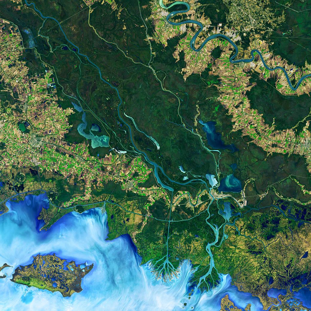 Satellite image of delta in Mississippi River