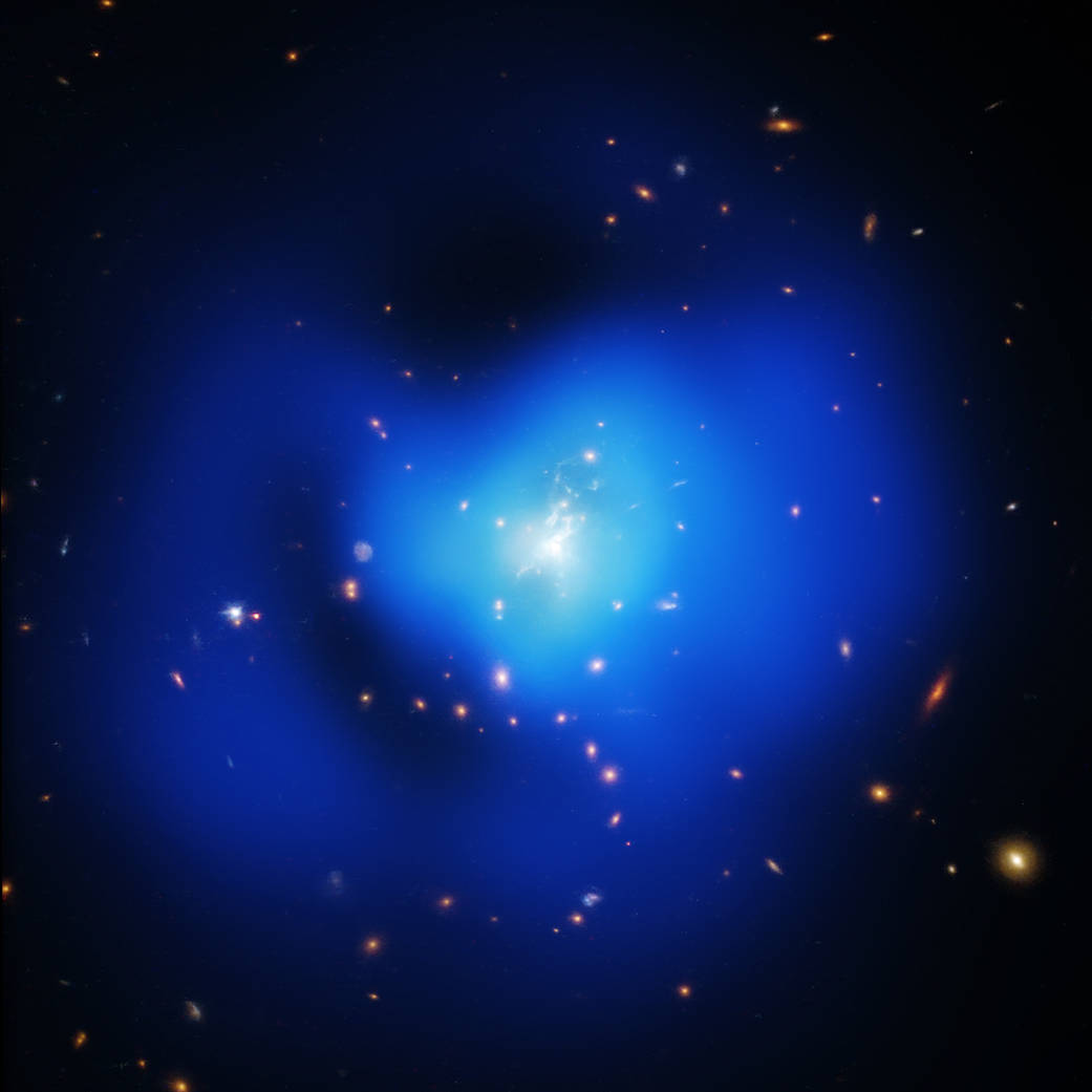 The Phoenix Galaxy Cluster