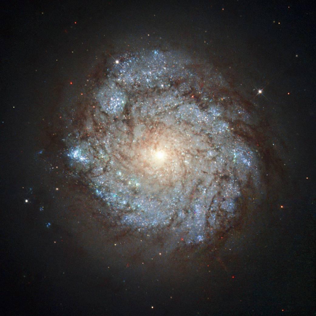 galáxia espiral bonita nos azuis e ouro