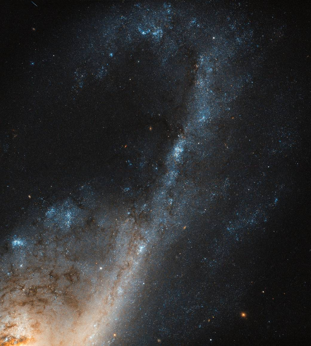 closup of spiral galaxy arm with blue clusters