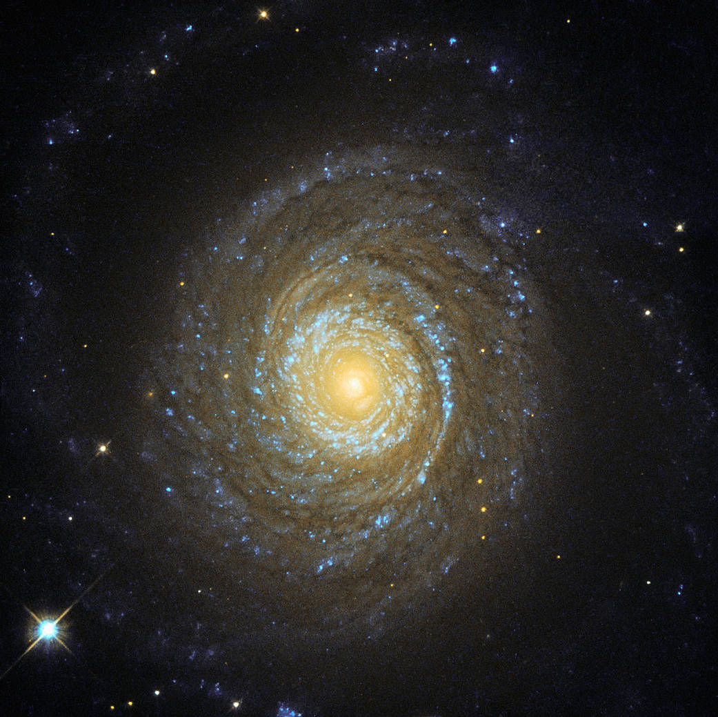 pretty face-on spiral galaxy with bright core