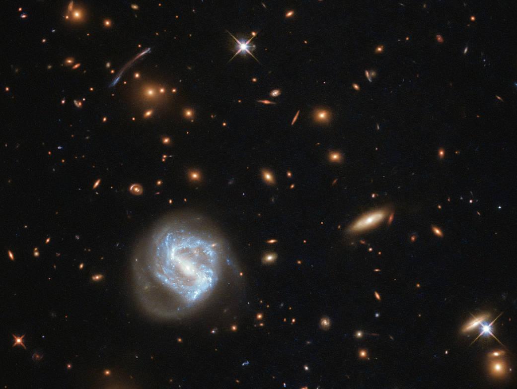 Hubble's Galaxy Cluster Cornucopia Potw1821a